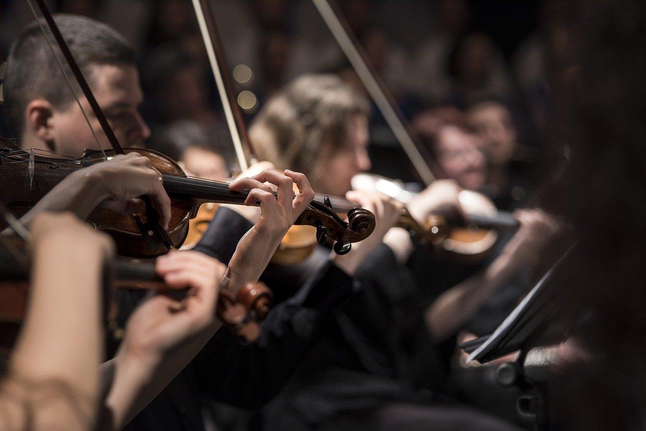 violins, musicians, orchestra
